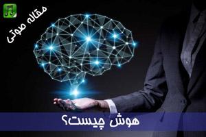 هوش چیست
